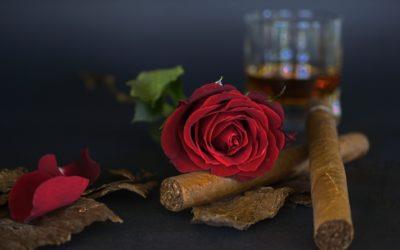 Efectos del consumo de alcohol y tabaco a largo plazo